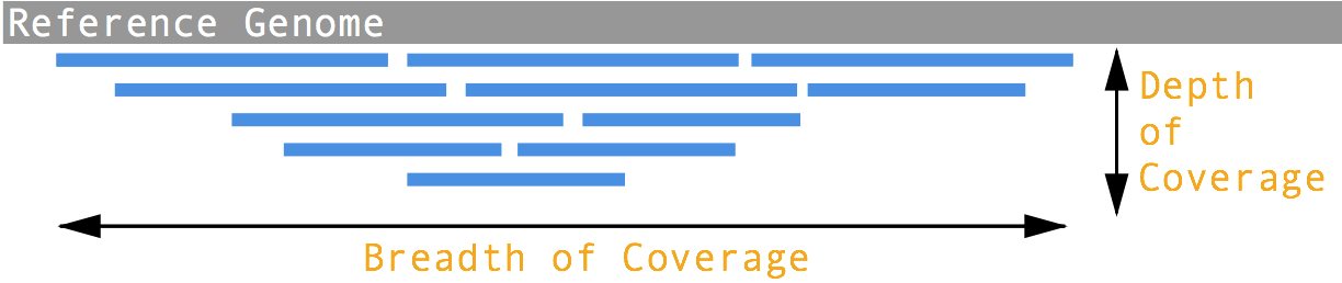 Depth vs. Breadth of Coverage
